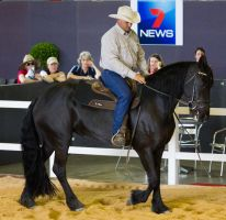 STOCK - 2014 Total Equine Expo-46 by fillyrox