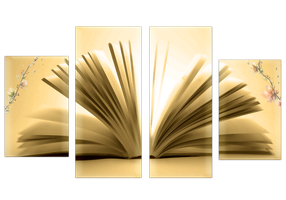 One book by MpaKyC
