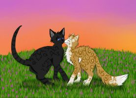 Cats-Warriors: Crowfeather x Leafpool by Do-omed-Moon