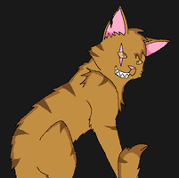 Tigerstar by DragonCartoons