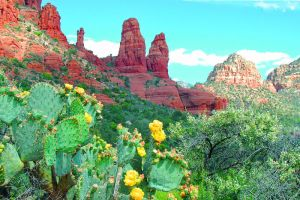 Sedona Arizona Red Rock by MikeysPhotos