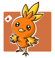 torchic by Pericote