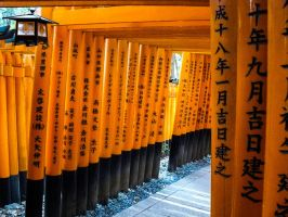 Torii 11 by thecomingwinter