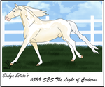6539 SES The Light of Cerberus by Shayla-Estate