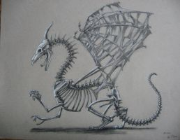 Skeleton Dragon by quail-bandit