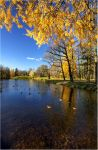 Autumn view... _59_ by my-shots