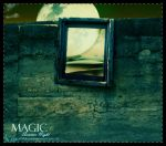 .:l Magic Summer Night l:. by LonelyDiary