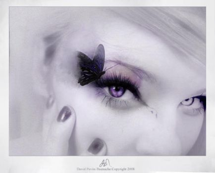 Lady butterfly by 22room