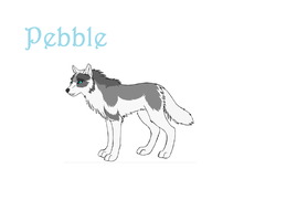 Pebble by wolfworld
