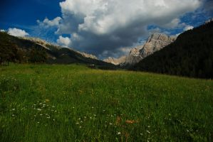 Alpine meadow by minko2312
