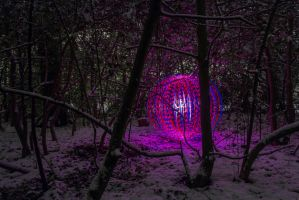 Orb in deep woods. by chivt800