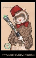 The 11th Doctor Who as a Ferret, Complete! by natamon