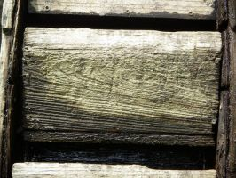 Wood 03 by stockimagine