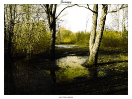 Swampy by sic-purity