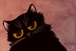 Annoyed kitty by Fjodor