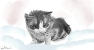 Kitty iScribble by MatiasBloodbones