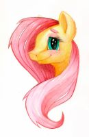 Vignetted Fluttershy Bust by Brendavid