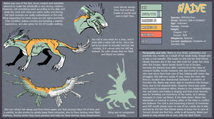 Naive reference sheet 2013 by Spiralchasm
