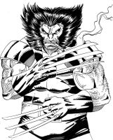 Wolverine classic by Claret821021