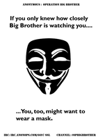 BigBrother is watching you #OpBigBrother by OpGraffiti