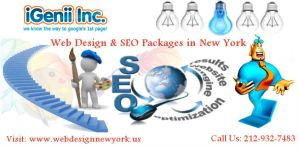 Web Design and SEO Packages in New York by webdesignnewyork