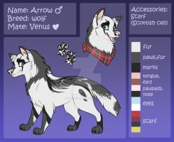 Ref Sheet || Arrow by iiAwshumness