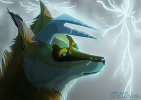 Point Commission Storm by WildWolvess