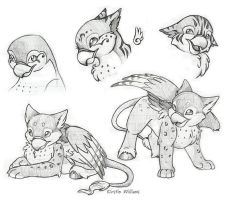Hippogriff Doodles by deeed