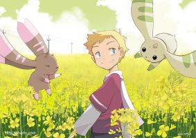 Field and digimon by Charln