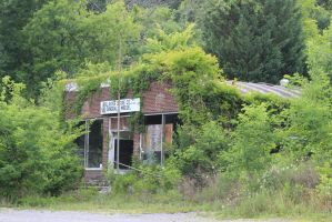 The Old Tallassee Store - June 2014 by CrystalMarineGallery