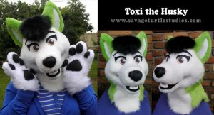 Toxi the Husky by JakeJynx