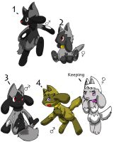 Poochyolu adopts closed by LittleWhiteWolfAngel