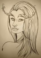 forest fae by dinadeer