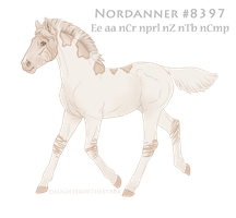 Foal #8397 by NorthEast-Stables