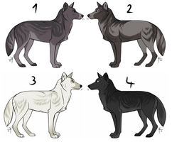 Canine adoptables by Gynadopts