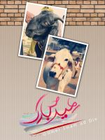 Eid Greetings by umerr2000