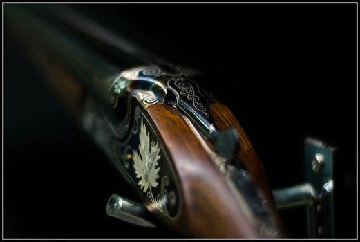 way of the gun by p25o1