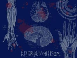 Hands 2 Brains by Keeler