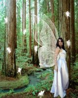 Queen of the Faeries by wildchild-sillygirl