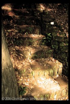 Natural Stairs by Chinsen