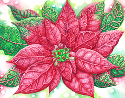 Pretty Poinsettia by ScribalWriter
