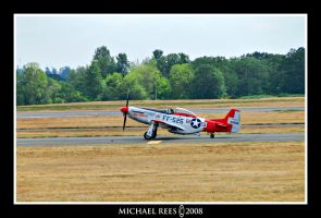 P-51D Mustang by Luv2suspendyou