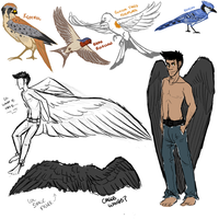 More Winged Things (More Tumblr Sketches) by KennonInk