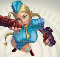 Cammy complete by rocketraygun