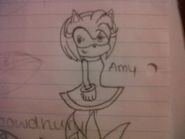 Amy Rose by FireWitch25