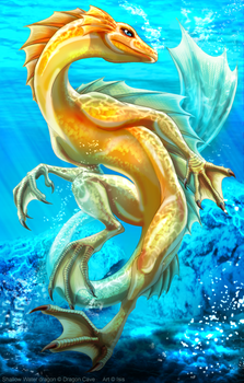Shallow Water dragon by IsisMasshiro