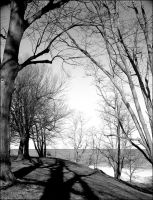Morning sun bw - March 2011 by pearwood