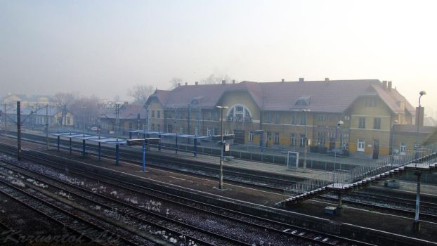 Cold and misty morning at Zywiec station. by VulpesPL