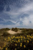 SOUTHWOLD BEACH by BlonderMoment