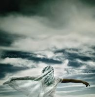 Fly blue bride... by ennil